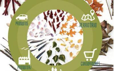 Design ao Vivo promove palestra aberta sobre ACV – Avaliação de Ciclo de Vida