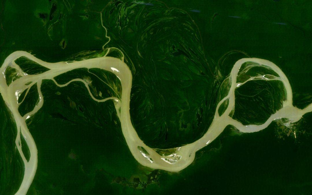 Um organismo vivo chamado Amazônia